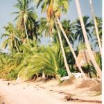 Riisistä ja turismista saatavat tulot eivät enää riitä Thaimaalle.